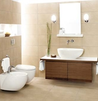 Picture for category Sanitaryware